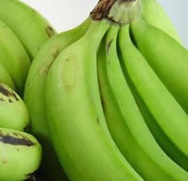 Presidential Initiative On Banana Industrial Development (PIBID)